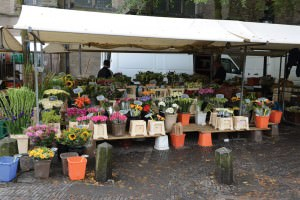 Flower_market_Utrecht_72dpi_1000x667px_E