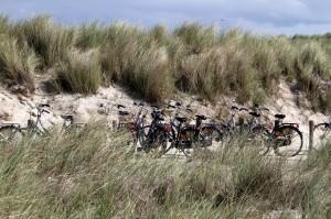 Bikes in Terschelling